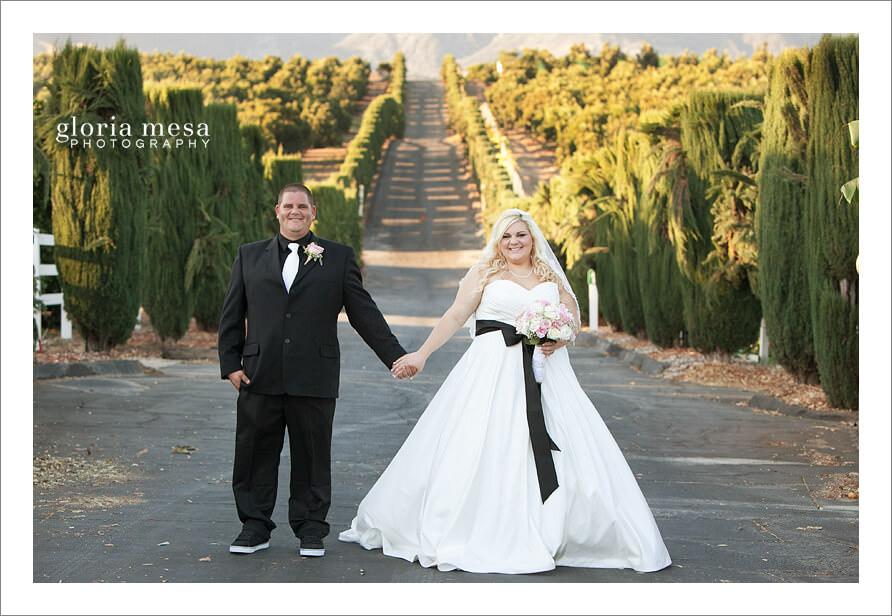 Bella Vista Grove, Ventura County, Photographer,