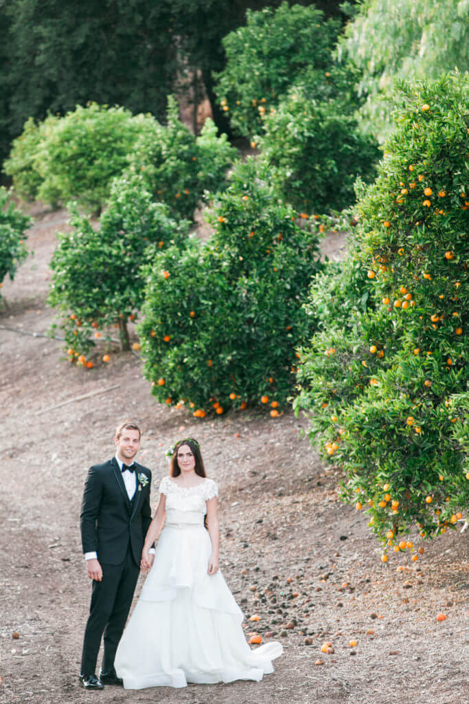 bride and groom on the orange trees